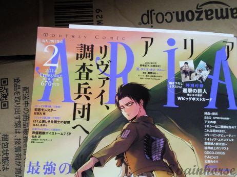 Rivai ARIA spainhorse 5
